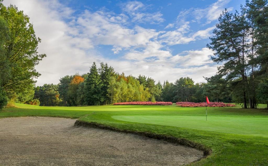 Glendale Golf Tilgate Forest