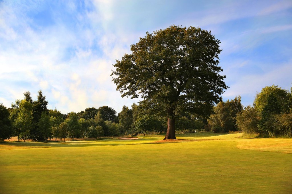 Stonebridge Golf Centre 7th Hole